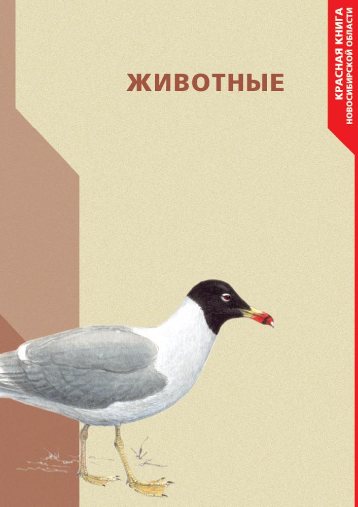 России красная книга россии растения